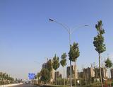 潍坊市寿光北环路路灯实景