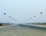 滨州市博兴县新城二路路灯实景